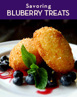 ricotta beignets with blueberries at James